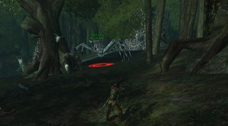 Old forest 2.jpg
